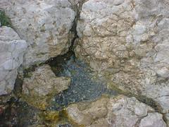 یکی از چشمه های قرخبولاغ در چالدران