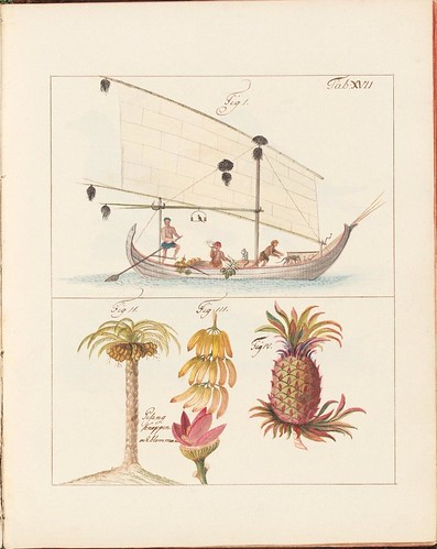 sailing ship + tropical fruit