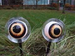 Jubilee Park Eyes #3