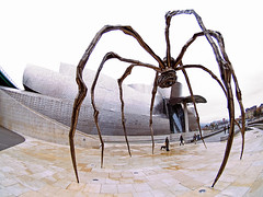 Dear Lucy (Sator Arepo) Tags: giant movie spider reflex spain arms olympus bilbao fisheye tarantula guggenheim highkey zuiko e500 uro 8mmed zd8mmfish35 gettyimagesspainq1 iberiastreets gettyimagesiberiaq2 gettyimagesiberiaq3