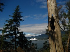 The view from the cliffs of Prospect Point (keepitsurreal) Tags: trees cliffs prospectpoint cruiseships