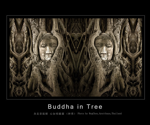 Head of Buddha in the tree,giger style
