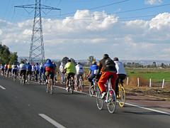 cyclistes4