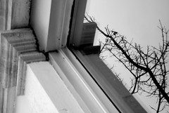 Avoir le choix (Marlandova) Tags: life winter sky canada reflection real grey gris high place montral hiver side border double line reflet vision qubec directions nuage objet curiosity loin lignes vie derrire ici haut saison voir ailleurs grisaille nuageux rel choisir chercher audel endormir laisser bordure nuageuse situer encadrer soutenir ralits objectivement