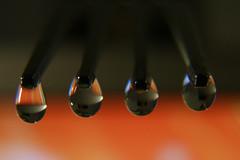 The wet fork (digikuva) Tags: macro wet canon finland eos helsinki europe fork heiluht drop refraction droplet efs1785mm img2299 40d extensiontubeef12ii waterdropsmacros