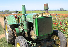 John Deere 1 (catfuzz) Tags: tractor field oregon spring tulips sockmonkey woodenshoe johndeere woodburn