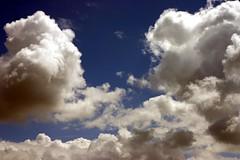 Cloudy (Jadydangel) Tags: blue sky white clouds intense cobalt explored natureycrap cmwdblue jadydangel exploreded wooooot499hah