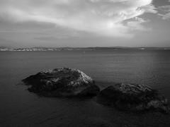 Trieste_072_1718 (Dubliner_900) Tags: olympus omdem5markii micro43 paolochiaromonte mzuikodigital17mm118 trieste friuliveneziagiulia bw biancoenero monochrome seascape sea seashore mare