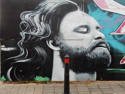 Mural With Flowing Hair