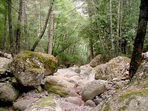 Ravin de la Cavicchia