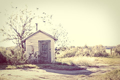 Shanty in the afternoon sun (emilycm) Tags: ranch vintage 50mm texas shed xp shanty shack nikkor f18 easttexas