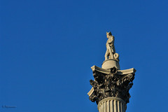 Statue of Admiral Nelson on his column