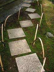 23 Katsura path.JPG