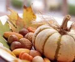 ss_pumpkinnuts