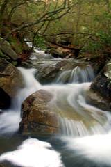 The Ever Falling Laurel Creek (the waterfallhunter) Tags: waterfall alabama desotostatepark cascade laurelcreek dekalbcounty fortpaynealabama
