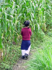 on the way to bhagsu (t h e Girl) Tags: india ganj mcleod dharamkot