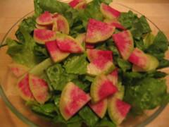 Pink radish salad (Koren's photos) Tags: pink salad local radish
