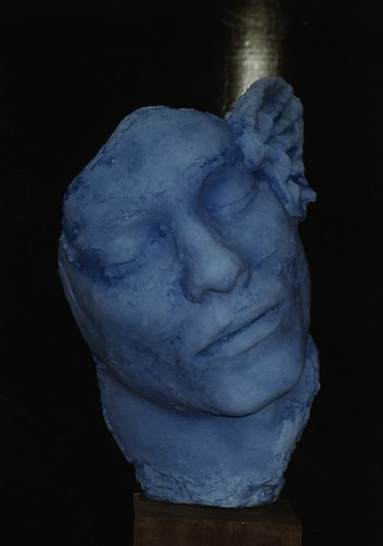 Blue winged head
