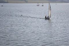 _J3P3187 (mylliejasper) Tags: sailing toppers bewl