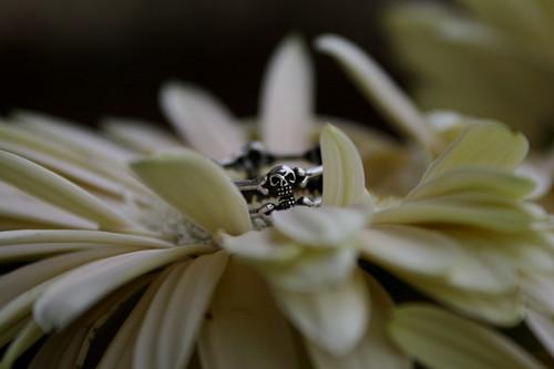 Death bloom