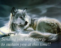 WolfEnergy[1] (bigredwolf2004) Tags: wolves wolfwoman squirrellsfirstdaytoschool policedig