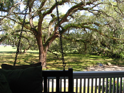 Eastward view from the porch swing
