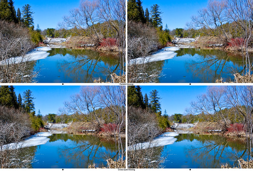 Scanlon Creek Falls Stereo