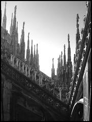 guglie (•:• panti •:•) Tags: blackwhite milano bn cielo duomo sole luce biancoenero cattedrale particolare guglie