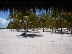 Camamu Bay - Tubaroe´s Beach, Bahia, Brazil