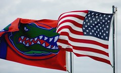 Good Day For Flags (gatorgalpics) Tags: usa gator nation flags fl truecolors cedarkeyfl explore87 letfreedomwave