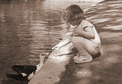 Paige 7980 (casch52) Tags: park 20d playground sepia kids sanantonio canon children photo duck kid san texas child play feeding tx paige ducks photograph feed antonio brackenridge explorer336 familygetty