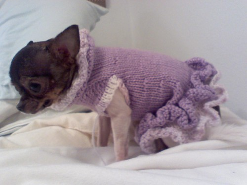 Free Crochet Pattern Chihuahua Sweater : Crochet Chihuahua Sweater Pattern - Long Sweater Jacket
