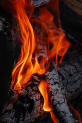 fire art (Lani Barbitta) Tags: wood orange explore burning lani firepit 55200mm sooc worldbest nikond40 ineverlikedjohnnycashuntilisawwalktheline lanibarbitta barbitta