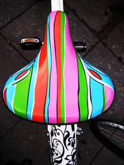 Spicylicious Bike Seatness