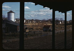 [Small farm of John P. Collins, Taunton, Mass.] (LOC)