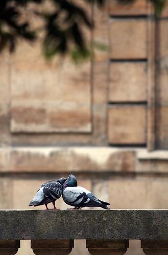 Love: Parisian Style