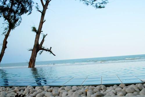 4509321423 1403cc6604 - The Bora Bora Bungalow Photos