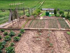 Rural garden (:Linda:) Tags: germany bench bucket village thuringia container soil garten wateringcan gieskanne bauerngarten erde cottagegarden erdboden brden ruralgarden erdreich ackerboden