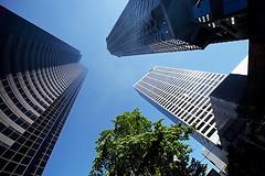 Buildings (gordeau) Tags: seattle buildings lookingup gordon ashby flickrchallengegroup flickrchallengewinner thechallengefactory gordeau