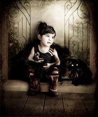 .Happy halloween. (mylaphotography) Tags: art texture halloween blackcat pumpkin digitalart fantasy tutu rahi childphotography jaber mylaphotography totallytexture thebestvivid michiganstudiophotography fairytalephotography