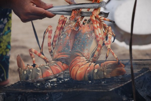 Grilled Lobster - Nha Trang Beach