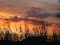 A touch of purple (peggyhr) Tags: trees sunset sky canada fall nature clouds colours silhouettes alberta colourful leafless 2007 supershot diamondclassphotographer flickerdiamond peggyhr bluebirdestates