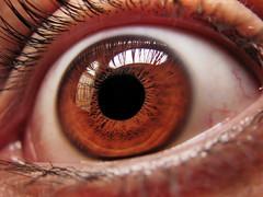 (Techuser) Tags: iris macro eye topv111 topv333 close topv222