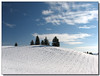 Hilltop (Lisa-S) Tags: blue trees winter sky white snow ontario canada clouds landscape lisas explore allrightsreserved invited caledon interestingness172 i500 5192 ultimateshot getty2009 escarpmentsideroad copyrightlisastokes getty20091008