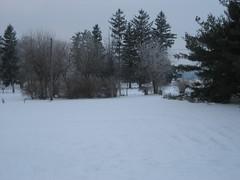 ::snow::