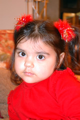 DSC_1590 (Koala-Bear) Tags: usa girl maryland potomac joes 2007 christmastreedecorations takenbyjoe