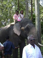 Indira Gandhi WS & NP