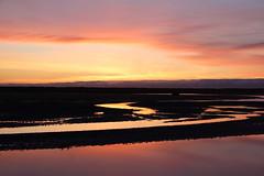 Yellowish, orangeish, purplish sky..