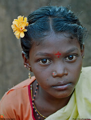 Save the Girl Child-00144 (Social India) Tags: poverty portrait india children asia top20childportrait humanity photojournalism makepovertyhistory society photoessay extremepoverty humancondition developingworld girlchild whiteband workingchildren adivasi peoplesportrait righttoeducation savethegirlchild firozahmadfiroz socialgeographic stopfemaleinfanticide righttofoodheath socialawarness socialattitudes saynotosexselectionandfemalefoeticide saynotodowry saynotoviolenceagainstwomen adibashi