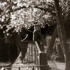 La stagione splendida - The shining season (~ nebe ~) Tags: light rome cherry time streetphotography stranger emotions tempo luce villaborghese sconosciuto emozioni concorso unpomeriggio ciliegiinfiore fotografiadistrada tuttosiferma diiniziodiprimavera